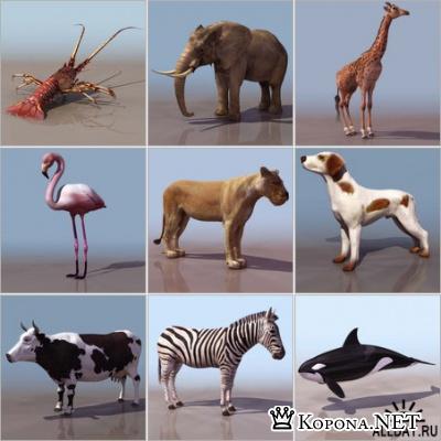 3D-модели животных