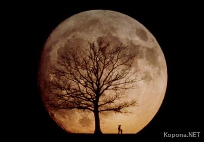 Что скрывает темная сторона Луны?