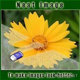 Neat Image Pro Plus 5.85