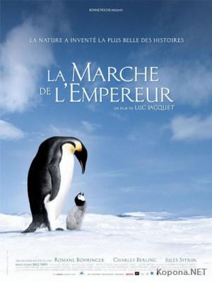 Марш Пингвинов / La Marche de l'Empereur