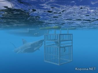 White Shark 3D Screensaver v1.0