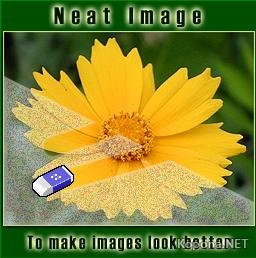 Neat Image Pro Plus v6.0 Retail FOSI