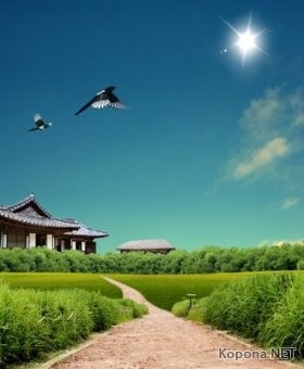 Пейзажный PSD-шаблон - Летний полдень (PSD)