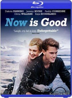 Сейчас самое время / Now Is Good (2012) Blu-ray + DVD9