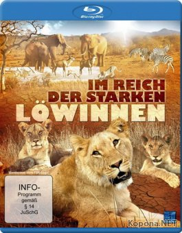 Discovery: Выживание в засуху / Surviving The Drought (2008) Blu-ray + BD Remux + BDRip 1080p / 720p