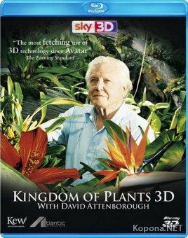 Царство растений / Kingdom of Plants (2012) Blu-ray [3D, 2D] + BDRip 1080p [3D, 2D] / 720p + HDRip