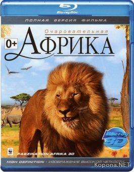 Африка / Faszination Afrika (2011) Blu-ray [3D, 2D] + BDRip 1080p [3D, 2D] / 720p + HDRip