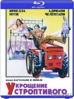 Укрощение строптивого / Il bisbetico domato (1980) Blu-ray + BD Remux + BDRip 1080p / 720p / AVC + HDRip