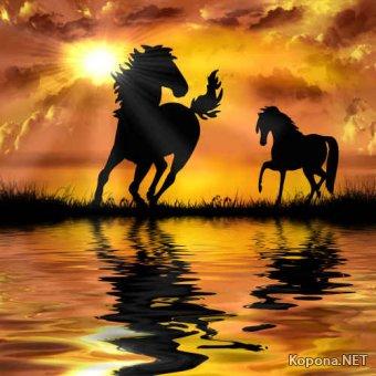 Растровый клипарт - Лошади 2 (JPG)