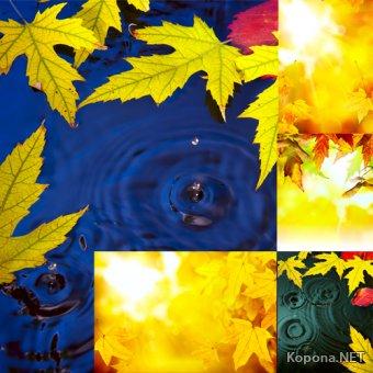 Осенние фоны - 01 (JPG)