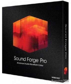 MAGIX Sound Forge Pro 11.0 Build 338