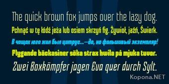 Шрифт Skorid (TTF, OTF)