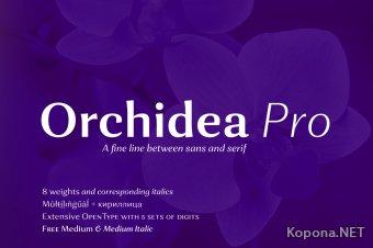 Шрифты семейства Orchidea (TTF, OTF)