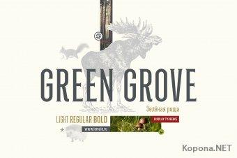 Шрифт GreenGrove (TTF, OTF)