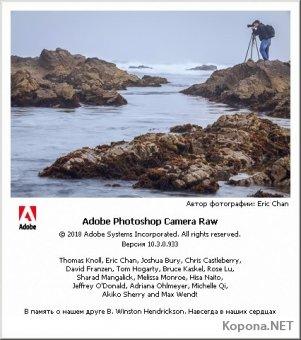 Adobe Camera Raw 10.3