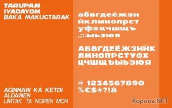 Шрифт Andor