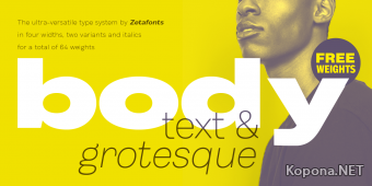 Шрифт Body
